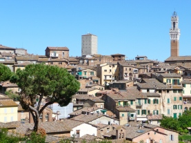 Duomo from afar