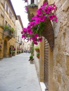 Flowers and alleys in Montepulciano
