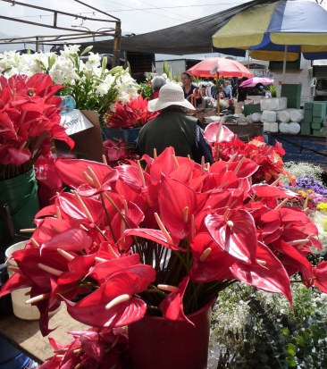 Flower vendor in hat
