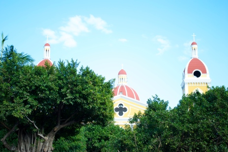 Catedral de Granada peeking through the treetops