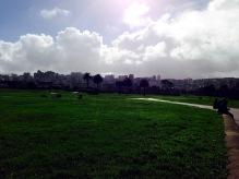 Sun after the rain
