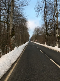 The road out of Roncesvalles