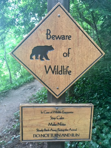 Beware of bears!