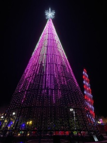 Christmas Tree Lights Purple and Pink