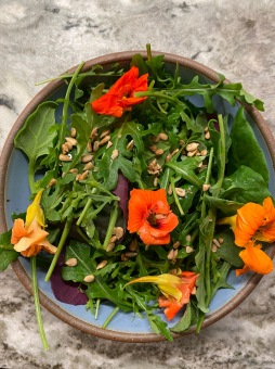 Salad with nasturtiums